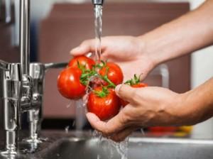 Légumes-500x374-500x3741-500x374