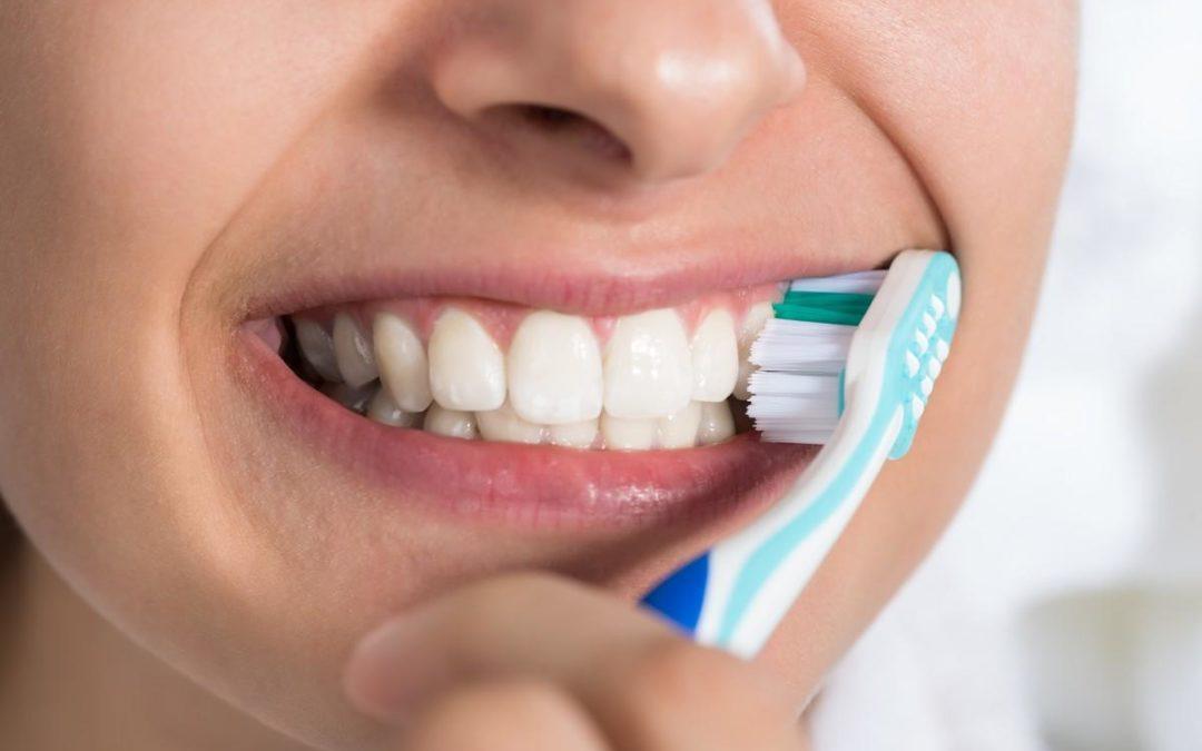 Les brosses à dents sont des nids à microbes